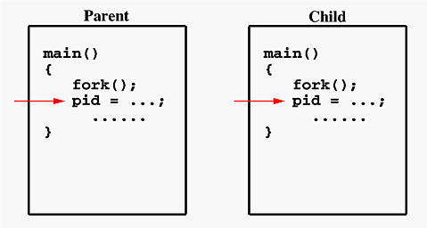 unix variable assignment
